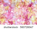 spring background with pink... | Shutterstock . vector #583728367