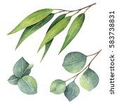 watercolor hand painted set... | Shutterstock . vector #583738831