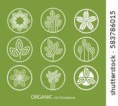 vector set abstract organic... | Shutterstock .eps vector #583786015