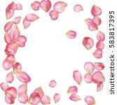 spring flower petals blossoms...   Shutterstock .eps vector #583817395