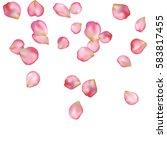 spring flower petals blossoms... | Shutterstock .eps vector #583817455