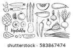 hand drawn vector illustrations ... | Shutterstock .eps vector #583867474