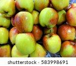 canada apple | Shutterstock . vector #583998691