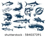 fish vector tuna  pike and... | Shutterstock .eps vector #584037391