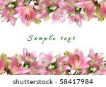 frame of pink lilies on a white ... | Shutterstock . vector #58417984