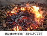 Fire Of Burning Dried Leaves