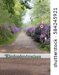 Oldenzaal  Netherlands   May 2...