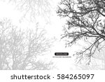 trees and branches silhouette...   Shutterstock .eps vector #584265097
