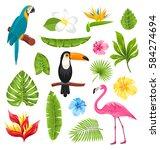 illustration set tropical... | Shutterstock . vector #584274694