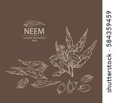 background with neem  leaves... | Shutterstock .eps vector #584359459