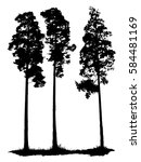 group of pine trees  vector... | Shutterstock .eps vector #584481169