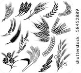 creative wheat ears and sheafs   Shutterstock .eps vector #58452889