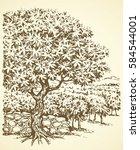 aged autumn biblical scenic... | Shutterstock .eps vector #584544001