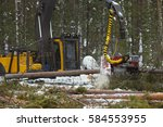 forest harvester working in the ... | Shutterstock . vector #584553955