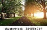 walkway lane path with green... | Shutterstock . vector #584556769