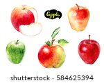 Apple Watercolor Illustration....