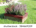 Basket With Heather On The Grass