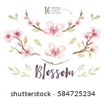 watercolor boho blossom flower... | Shutterstock . vector #584725234