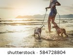 Stock photo thai dogs enjoy playing on beach with owner 584728804