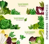 lettuce salads and vegetables... | Shutterstock .eps vector #584824111