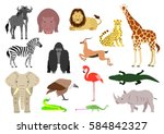 african animal element set on... | Shutterstock .eps vector #584842327