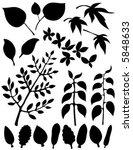 vector several different leaf... | Shutterstock .eps vector #5848633