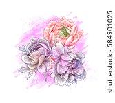 sketch flowers peony closeup.... | Shutterstock .eps vector #584901025