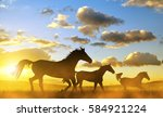 Silhouette Of A Horses In...