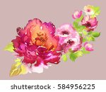flowers watercolor illustration.... | Shutterstock . vector #584956225