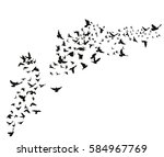 silhouette flying birds on... | Shutterstock .eps vector #584967769