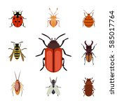 insect icon flat isolated... | Shutterstock .eps vector #585017764