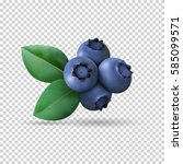 blueberry with leaves isolated... | Shutterstock .eps vector #585099571