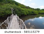 mangrove forest and hot springs ... | Shutterstock . vector #585115279