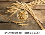 malt in glass and spikes on... | Shutterstock . vector #585131164