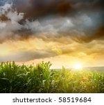 Dark Skies Looming Over Corn...