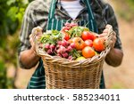 mid section of farmer holding a ... | Shutterstock . vector #585234011