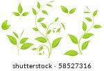 set of various green plants ... | Shutterstock .eps vector #58527316