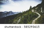 hiking trail through forested... | Shutterstock . vector #585293615