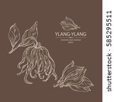 background with ylang ylang.... | Shutterstock .eps vector #585295511