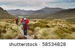 walkers trekking across... | Shutterstock . vector #58534828