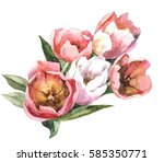 Hand Painting 5 Pink Tulips...