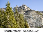 fir trees in forest and hill at ... | Shutterstock . vector #585351869