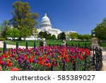 Washington DC in springtime - The United States Capitol Building and tulips