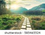 sunset in the woods corridor | Shutterstock . vector #585465524