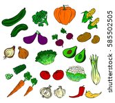 all kinds of vegetables | Shutterstock .eps vector #585502505