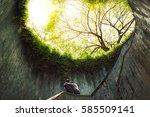 couple of love in beautiful big ... | Shutterstock . vector #585509141