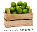 fresh citrus lime fruit in... | Shutterstock . vector #585547715