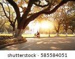 the autumn city park  | Shutterstock . vector #585584051
