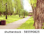 path in the park  which leads... | Shutterstock . vector #585590825