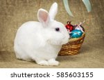 white clean beautiful easter... | Shutterstock . vector #585603155